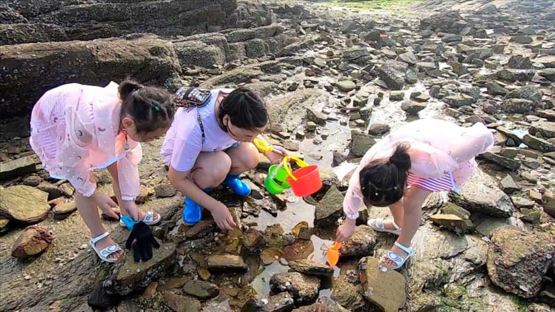 河南游客到日照旅游,住渔家乐体验海边赶海